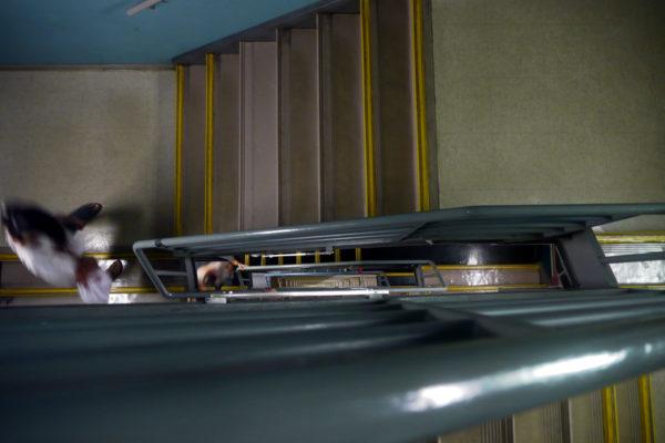 台北101の階段